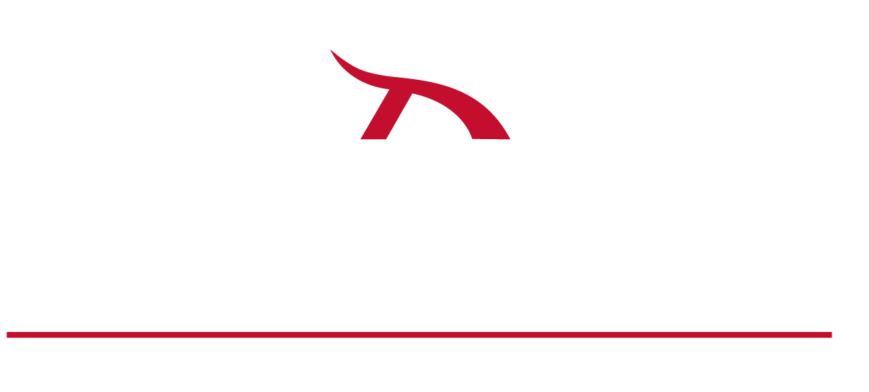 Century Insurance Group, logo